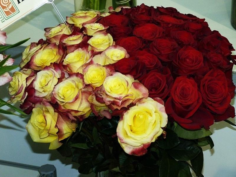 самых преданных букеты роз для подруги фото реалистичность звездного